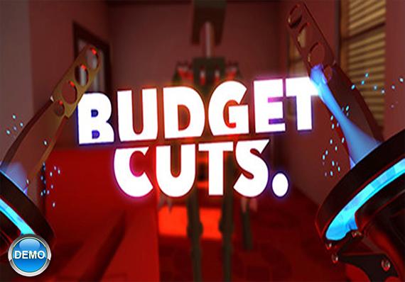 Budget-Cuts-Demo-X